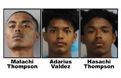 Vehicle burglary suspects